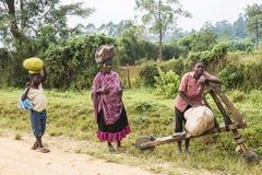 Ludzie niosą havy ładunki na kierowniczym i drewnianym rolowniku w Afryka Obrazy Stock