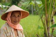 Ludzie od Indonezja, Ryżowi pracownicy zdjęcia stock