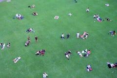Ludzie odpoczywa na gazonie Zdjęcia Stock