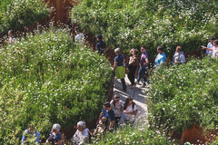 Ludzie odwiedza UK pawilon przy expo 2015 w Mediolan, Włochy Obraz Royalty Free