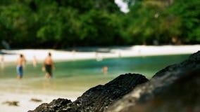 Ludzie pływa i relaksuje na tropikalnej plaży