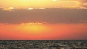 Ludzie pływa w morzu nad powstającym dennym słońcem zbiory wideo
