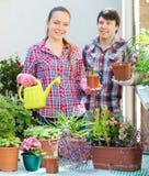 Ludzie prac z kwiatami Obraz Royalty Free