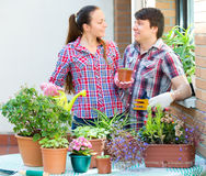 Ludzie prac z kwiatami Fotografia Stock