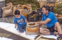 Ludzie pracuje w dywanie kwiaty Obraz Royalty Free