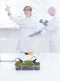 Ludzie pracuje w laboratorium zdjęcia stock