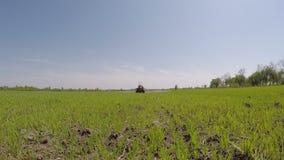 Ludzie pracuje w rolnictwie zbiory