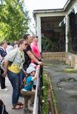 Ludzie przy zoo blisko klatek z drapieżnikami Obraz Stock