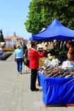 Ludzie robią zakupom w miasto parku Fotografia Stock