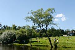 Ludzie są odpoczynkowi w dziejowy parkowy ` Kuzminki-Lublino ` Obraz Royalty Free