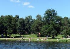 Ludzie są odpoczynkowi w dziejowy parkowy ` Kuzminki-Lublino ` Zdjęcie Royalty Free