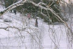 Ludzie spaceru w zima parku W przedpole brzozy gałąź zdjęcia royalty free