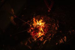 Ludzie stoi wokoło ogniska mienia wtykają i rozgrzewkowy w górę nocy przy fotografia royalty free
