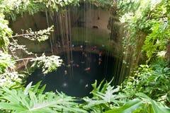 Ludzie w cenote, Meksyk Fotografia Stock
