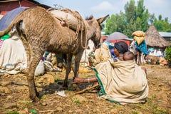 Ludzie w Etiopia, Afryka Zdjęcie Royalty Free