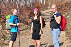 Ludzie w lesie Fotografia Royalty Free