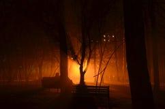 Ludzie w miłości siedzi na ławce przez mgły zdjęcie stock