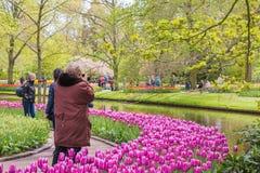 Ludzie w parku kwiaty Keukenhof Obrazy Stock