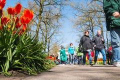 Ludzie w parku kwiaty Keukenhof Fotografia Stock