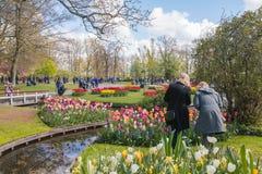 Ludzie w parku kwiaty Keukenhof Fotografia Royalty Free