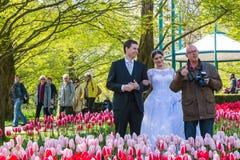 Ludzie w parku kwiaty Keukenhof Obraz Royalty Free