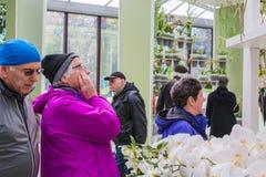 Ludzie w parku kwiaty Keukenhof Zdjęcie Royalty Free