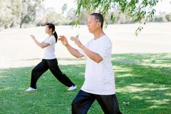 Ludzie ćwiczy tajlandzkiego chi w parku Zdjęcia Royalty Free