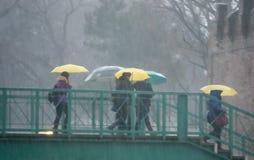 Ludzie z parasolami zdjęcia stock