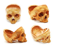 ludzka czaszka Obrazy Royalty Free