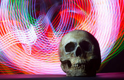 Ludzka czaszka na DOWODZONYM tle Zdjęcie Royalty Free