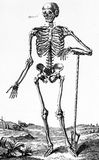 Ludzka czaszka, rocznik ilustracja Obraz Stock