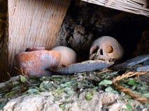 Ludzka czaszka w grób Fotografia Royalty Free