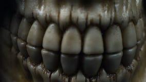 Ludzka czaszka w metalu hełmie zbiory wideo