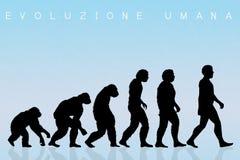 Ludzka ewolucja, gatunki ilustracji