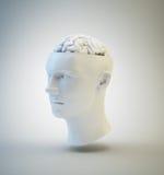 Ludzka inteligencja i psychologia Zdjęcia Stock