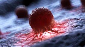 Ludzka komórka nowotworowa ilustracja wektor