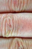 ludzka makro- skóra Obraz Royalty Free