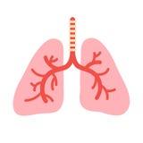 Ludzka płuco anatomia royalty ilustracja