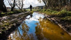 Ludzka postać na droga śladzie Drzewo odzwierciedla w wodzie w górę zdjęcia stock