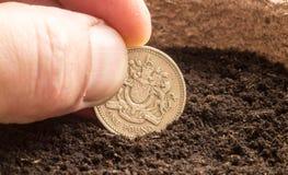 Ludzka ręka Sia Funtową monetę w komposcie Zdjęcia Royalty Free