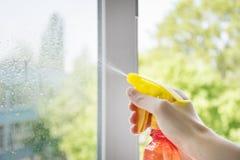 Ludzka ręka utrzymuje specjalnego cleaner dla okno obraz royalty free