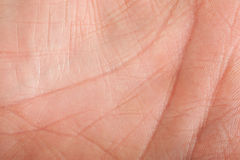 ludzka skóra Zdjęcie Royalty Free