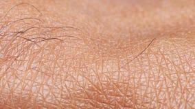 Ludzka skóry analiza zbiory