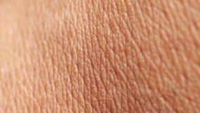 Ludzka skóry analiza zbiory wideo