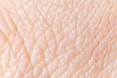 ludzka skóra Obrazy Royalty Free