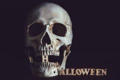 Ludzki czaszki abecadło Halloween Zdjęcie Royalty Free