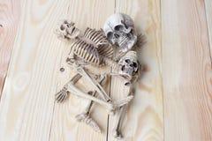 Ludzki czaszki i istoty ludzkiej kościec na sosnowego drewna tle Fotografia Stock