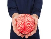 Ludzki gumowy mózg między rękami Zdjęcie Royalty Free