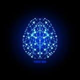 Ludzki mózg doskonałości pojęcie Zdjęcie Stock