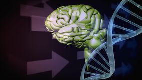 Ludzki mózg i DNA helix zdjęcie wideo